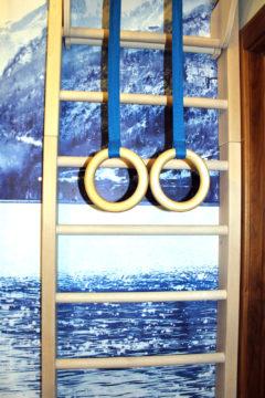 Шведская стенка, турник, кольца
